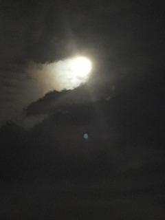 満月パナリナ1.JPG