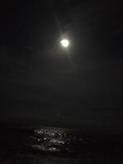満月パナリナ2.JPG