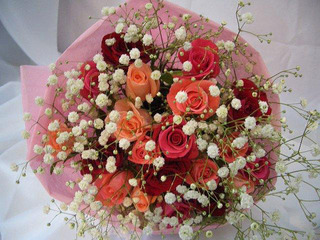 roses-B08.jpg